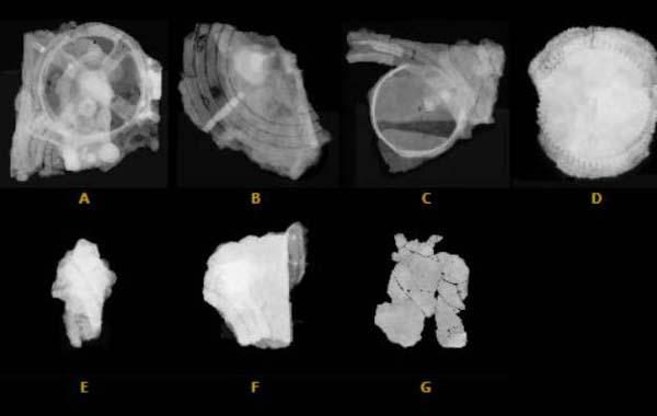 Фото 1. Антикитерский механизм, фрагменты A-G. Радиография. Масштаб не соблюден
