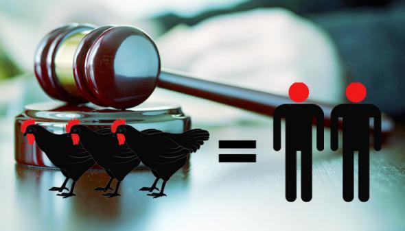 Убийцы получают условные сроки, а похитители куриц — реальные.