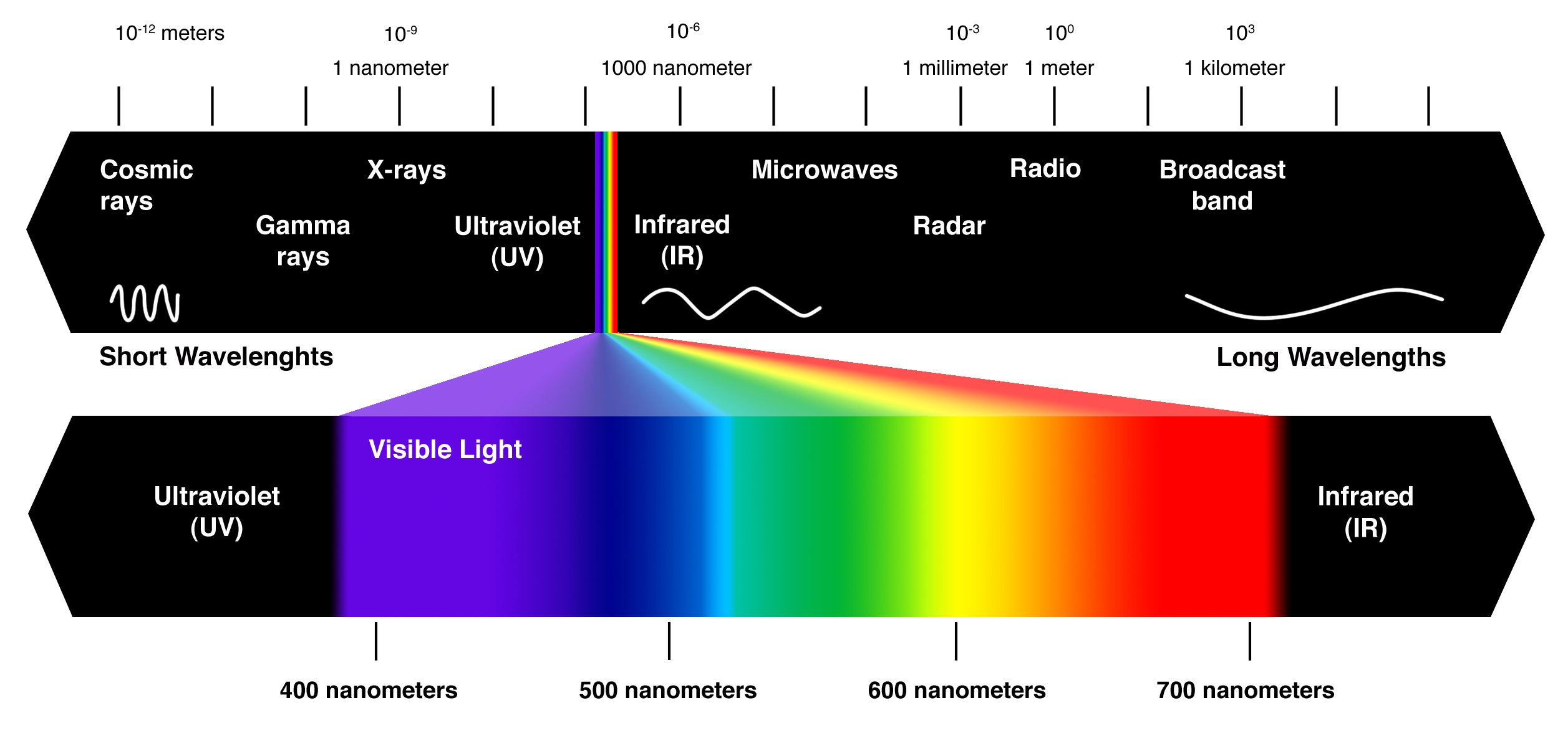 electromagnetic-spectrum-with-expanded-visible-light-section