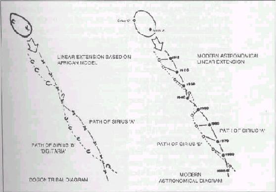 Орбиты звезд Сириуса А и Б. Слева изображение в пещере Догонов, справа научный рассчет
