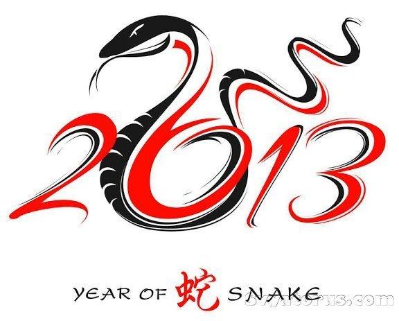 1356966863_snake_year-1