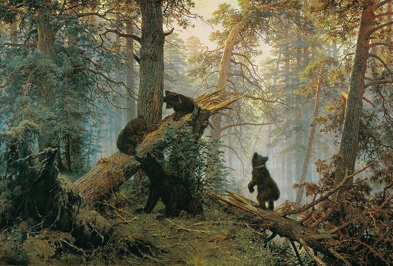 800px-Shishkin,_Ivan_-_Morning_in_a_Pine_Forest