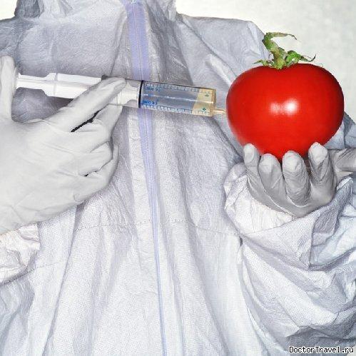 Опасность ГМО для человека и природы (4)