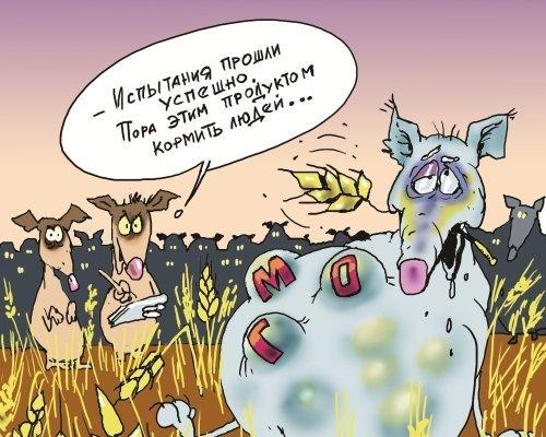 Опасность ГМО для человека и природы (6)