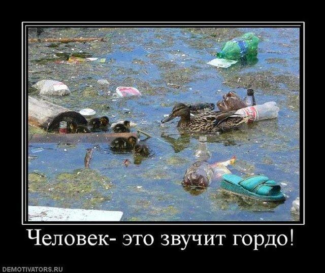 Всемогущество мусора (7)