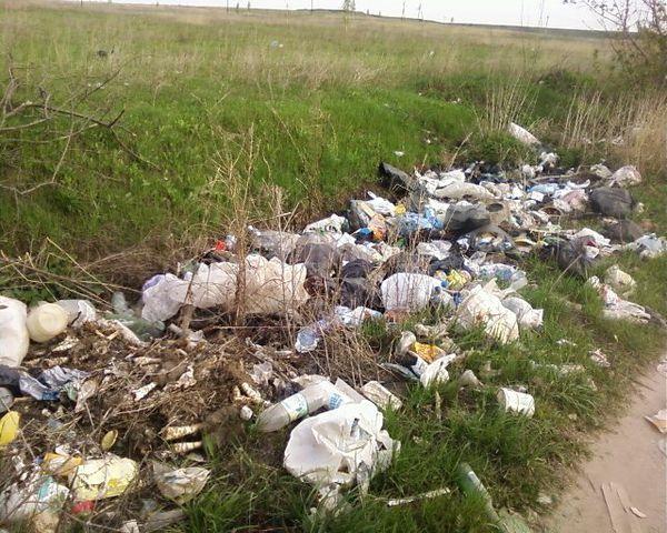 Всемогущество мусора (9)
