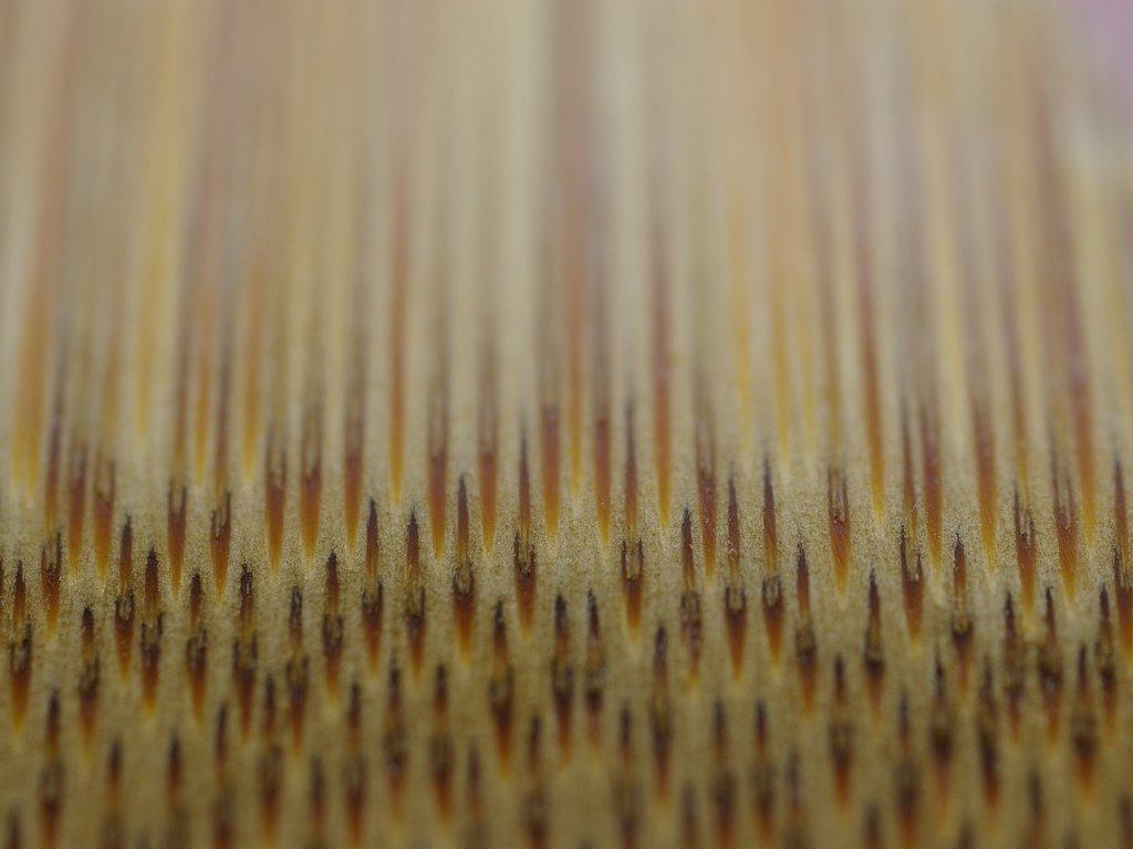 Биофотоны, или Одежда от природы (6)