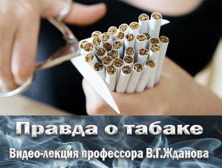 1350226222_tabak