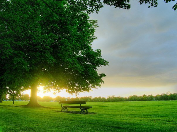 Начало доброго дня, или Зачем просыпаться рано утром