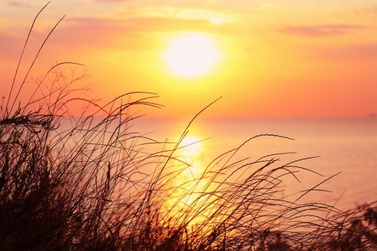 Начало счастливого дня, или Зачем просыпаться рано утром (5)