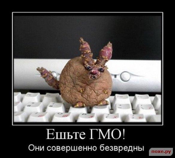 1244904271_opjat-demotivatory_35937_s__15