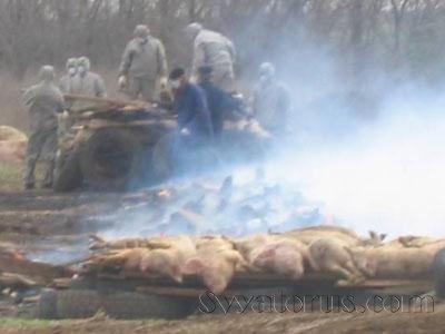 http://www.pravda-tv.ru/wp-content/uploads/2013/07/1374817711_image_114158699067582748581525811261583909.jpg
