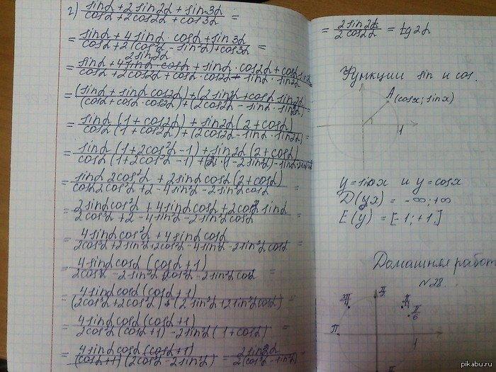 Учусь в России в 10 классе.