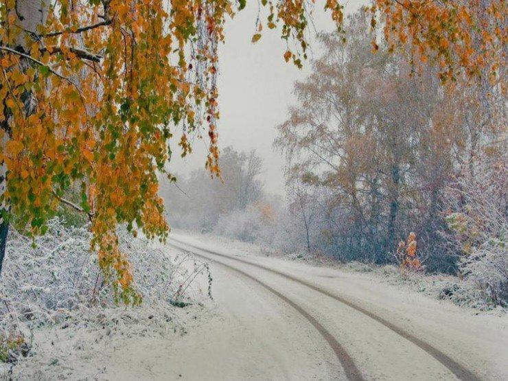 6. Сибирь.jpg