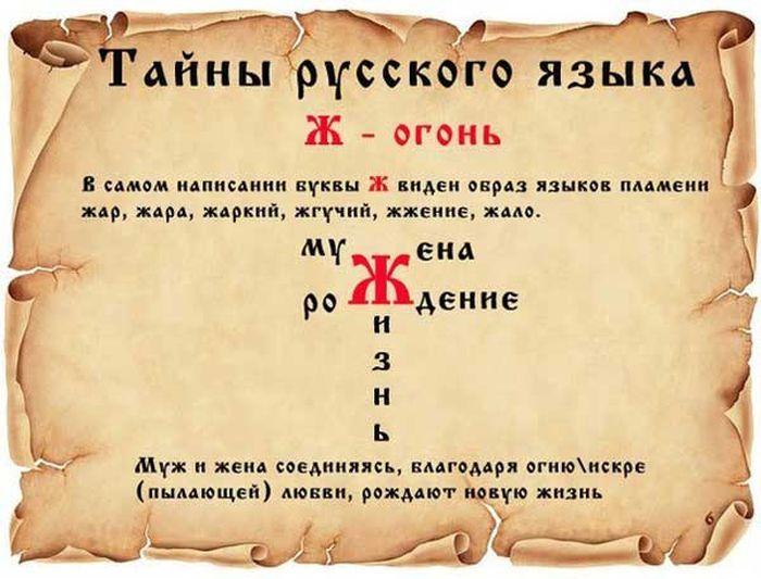 taina-0006