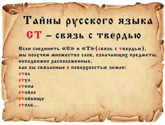 taina-0010