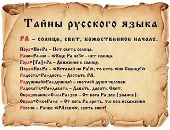taina-0012