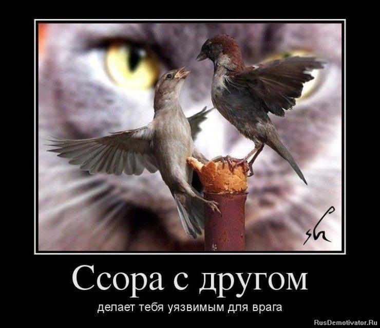 0_9a2bc_871638bb_XL