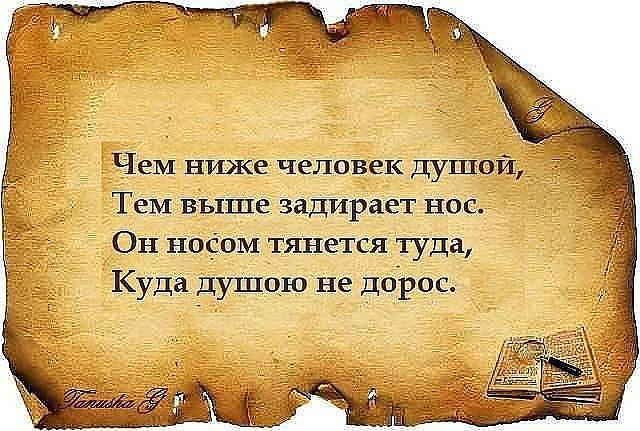 0_9a2bd_15503df9_XL
