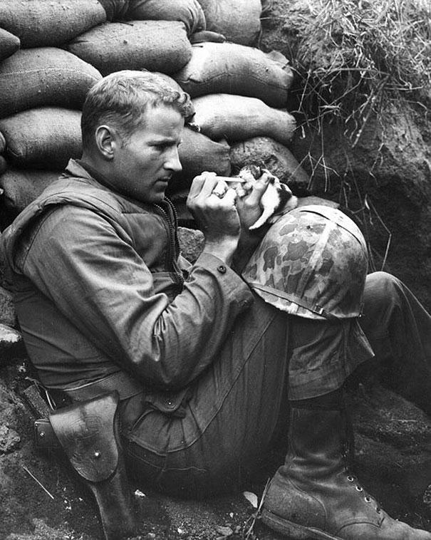 Спасение котенка во время войны. Несмотря на все ужасы войны, этот солдат нашел время покормить из пипетки котенка.