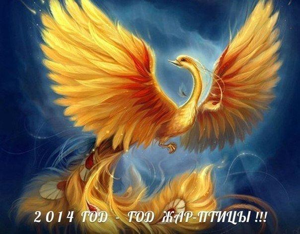 108613424_108570082_5039746_Jar_ptica