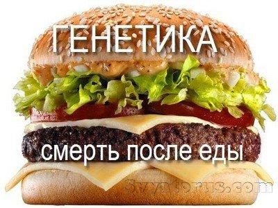 GMO_Burger