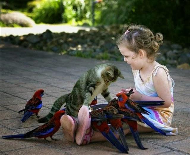 Как сделать ребенка счастливым (1)