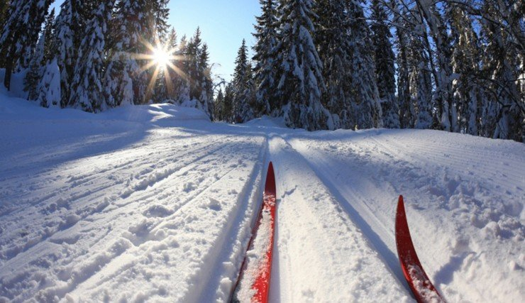 беговые-лыжи-2_0