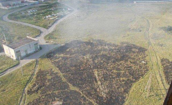 30.07.2014. Сожженная трава в Шахтерске.