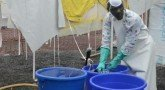 Эбола. Эпидемия из пробирки. (документальный фильм)