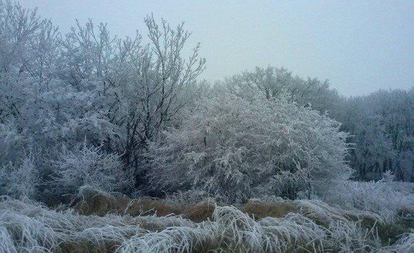 Проехав по Донецку,мы поспешили в Ясиноватую,чтоб успеть сделать фоторепортаж до темноты. Выехав на трассу мы попали в сказку. Все деревья , кусты травинки были припорошены снегом и покрыты изморозью.
