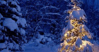 Noite-de-Natal-Árvore-de-Natal-1600x2560