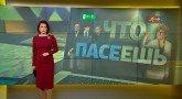 Что ПАСЕешь: драки, деньги и война на Украине