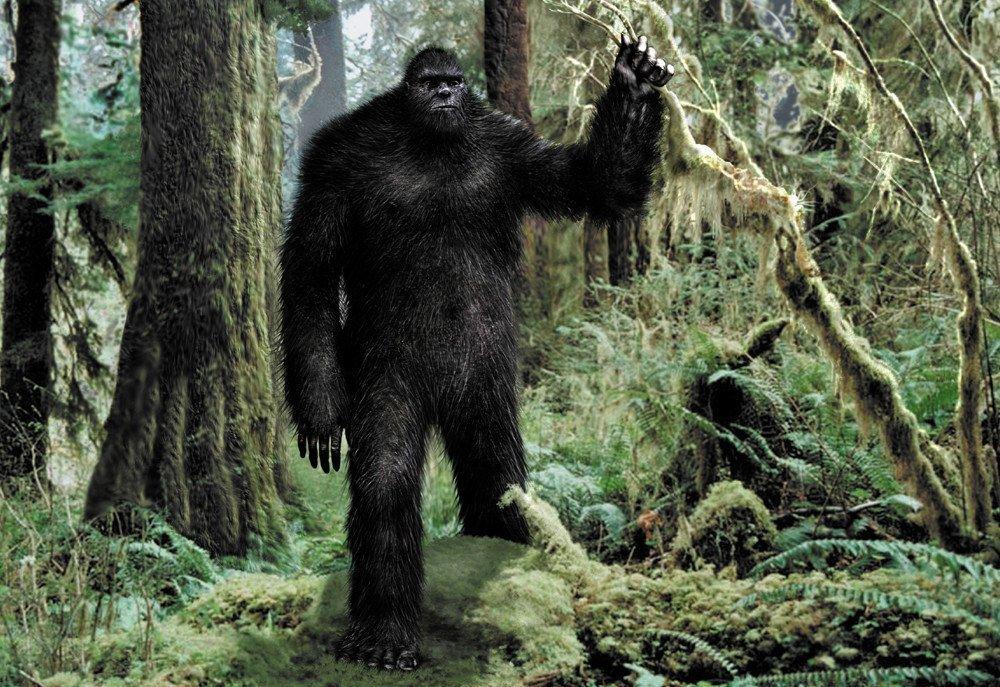 bigfoot21
