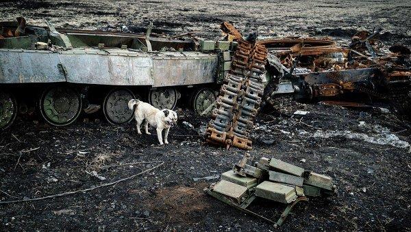 © AFP 2015/ Dimitar Dilkoff