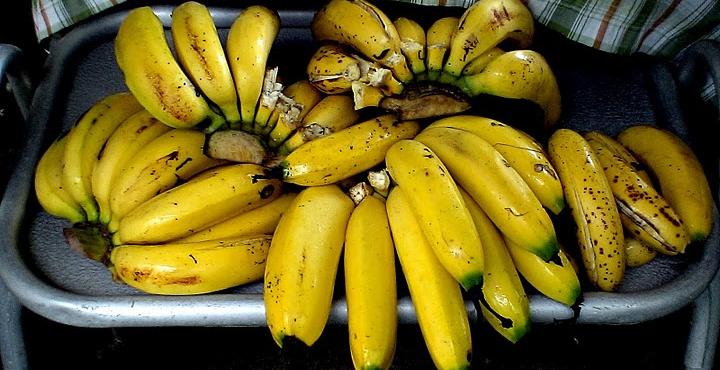 новости-бананы-длиннопост-песочница-2284428