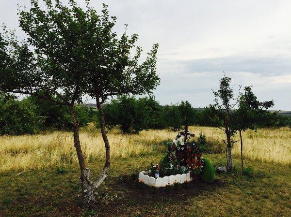 © РИА Новости Современный вид места гибели Стенина, Вячало и Коренченкова