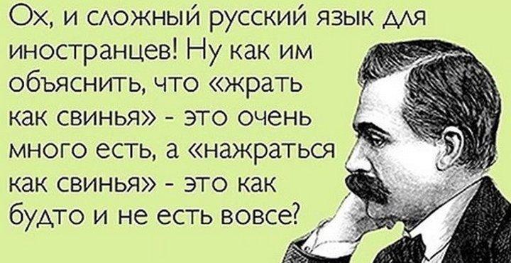 12-chudesnyh-tonkostey-russkogo-yazyka_702