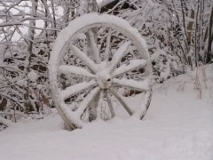 В этот день уделяли много внимания колесам (Фото: Pierdelune, Shutterstock)