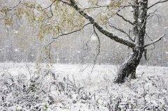 На Руси в Иванов день провожали осень и встречали зиму (Фото: Certe, Shutterstock)
