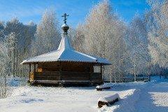 На Илариона примечали: если снег ляжет на сырую землю и не растает — значит, весной рано зацветут подснежники (Фото: elen_studio, Shutterstock)