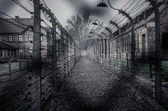 Холокост и фашизм — это проблема мирового масштаба (Фото: Nejron Photo, Shutterstock)