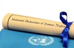 Декларация прав человека стала первым мировым документом, сформулировавшим положения о правах человека (Фото: corgarashu, Shutterstock)