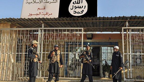 несостоявшихся террористов арестовали