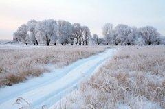 К этому времени окончательно устанавливалась зимняя санная дорога (Фото: vladimir salman, Shutterstock)