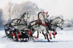 Верили, что в этот день по улицам проезжает сама Зима на тройке лошадей (Фото: Olga Vasileva, Shutterstock)