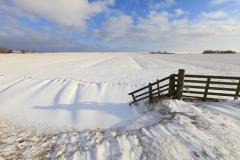 На Варвару, как правило, наступало время сильных морозов (Фото: Shutterstock)