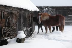По погоде на Агея судили о том, каким будет апрель (Фото: Shutterstock)