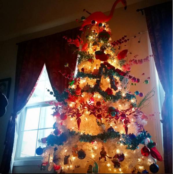 Фото: instagram/deluxe_dame