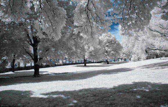 снега становится больше